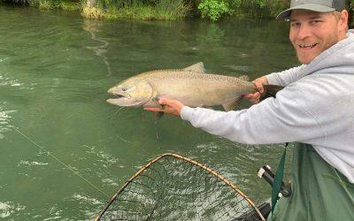 2020 Spring Salmon Season